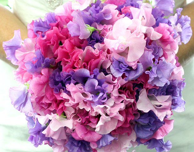 sweetpea-bridal-bouquet